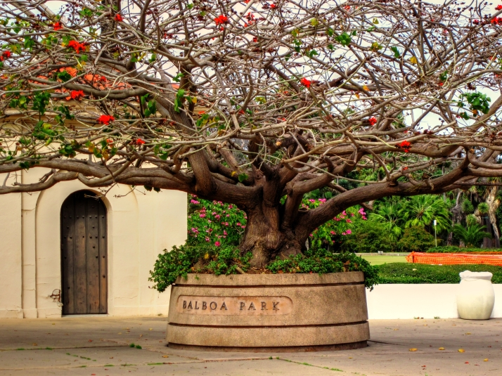 Balboa Park_tonemapped