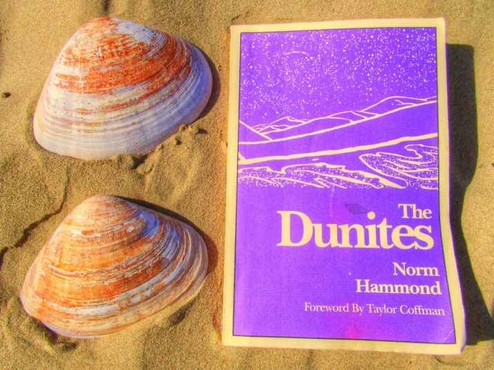 Dunites Book Cover_Small tonemapped - Copy.jpg