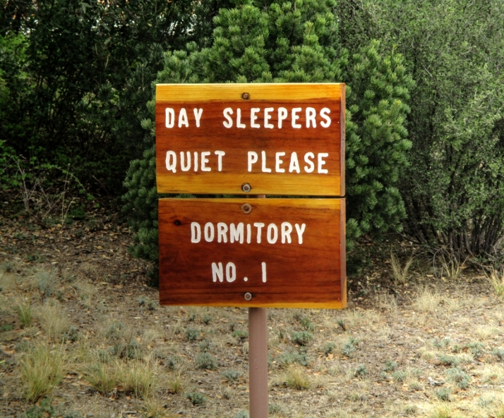 Day Sleepers Sign_Small tonemapped