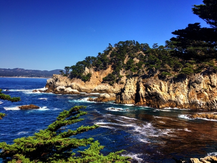 point-lobos-small