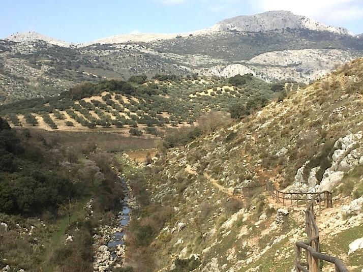Alfarnate Trail