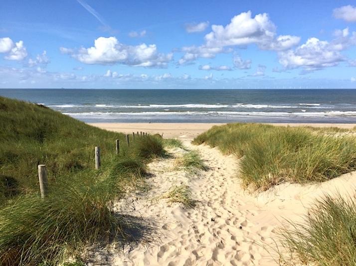 Dunes and Beach 3