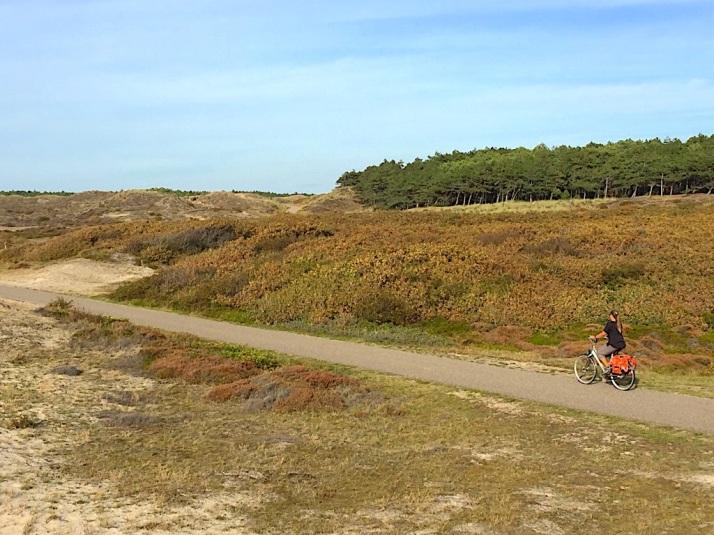 Es riding in dunes