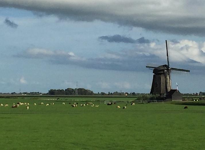 Polder windmill
